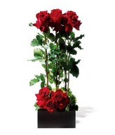 Arrangement of red roses with greenery