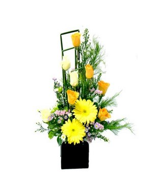 Yellow Roses, White Roses & Yellow Gerberas in a Pot