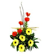 Basket of yellow and red gerberas