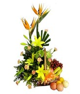 Gift Basket of Fruits and flowers