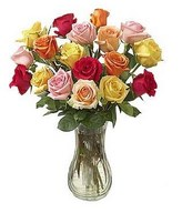 Posy of roses in colorful hues