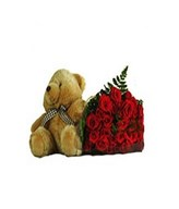 Teddy Bear, Bouquet of red roses